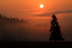 ráno babí léto
